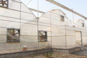 trinog_hidroponik_greenhouse_saudi